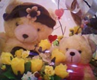 teddy-bear-secundaputri